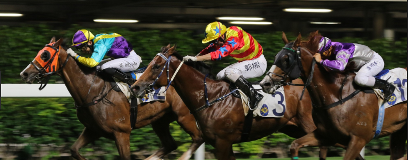 Professional Horse Racing Tips Melbourne – All What You Need In Terms Of Horse Racing