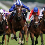 Professional Horse Racing Tips