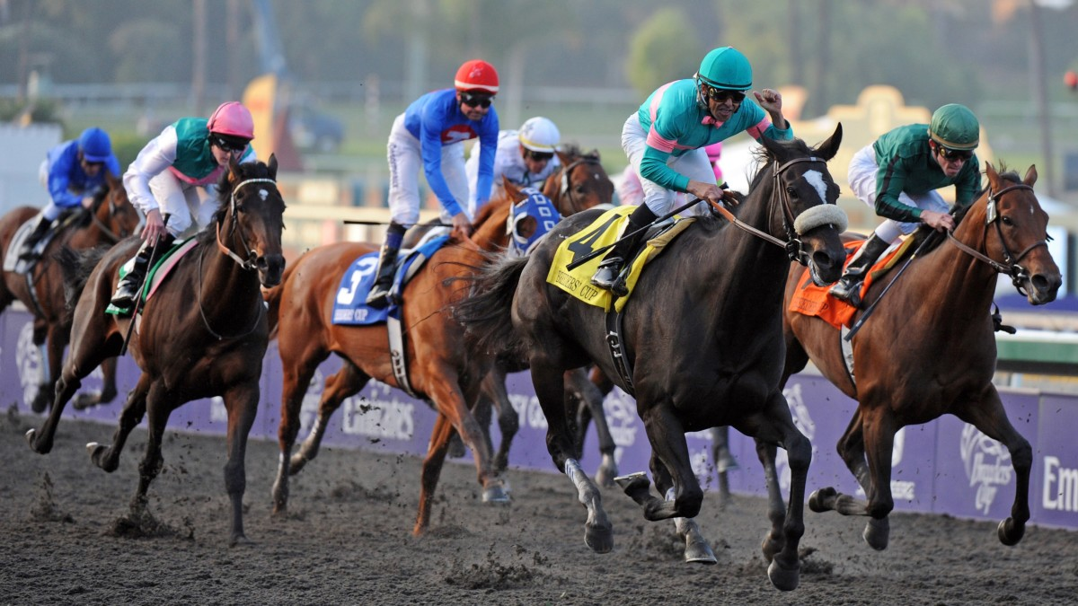 How Horse Racing Tips Service Providers Can Serve You