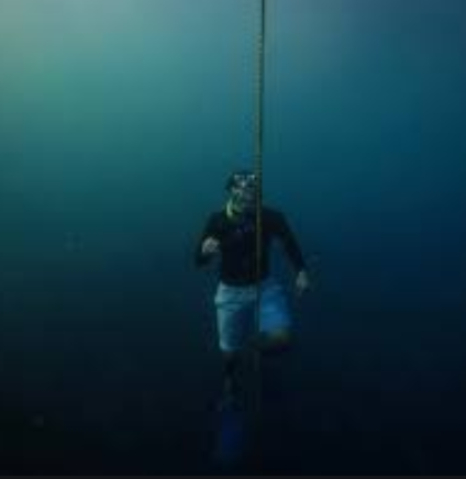 Freediving Course – A Growing Sport For Sportsmen